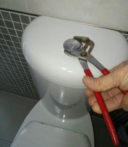 pulsante wc non