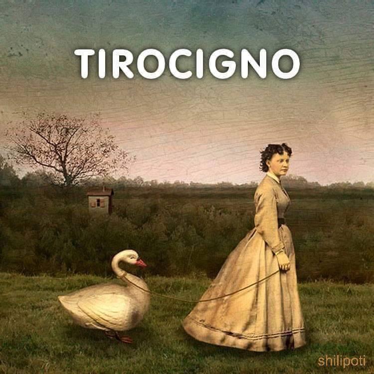 Tirocigno