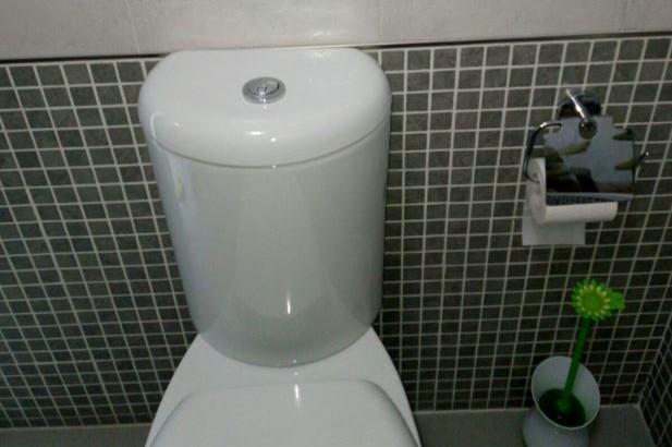 il pulsante del water non funziona